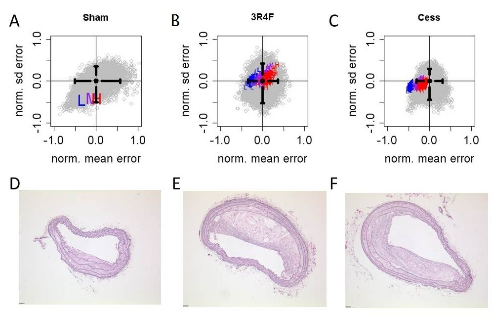 The Apoe-/- Mouse PhysioLab® Platform: A Validated Physiologically-based Mathematical Model of Atherosclerotic Plaque Progression in the Apoe-/- Mouse